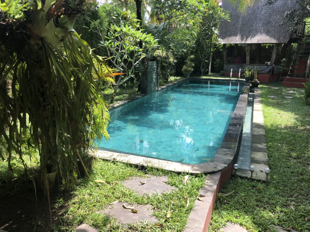 the pool and yard at our first villa